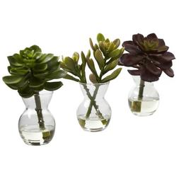 Nearly Natural 4954-S3 Succulent Arrangements, Green, Set of