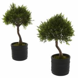 Nearly Natural 4965-S2 Cedar Bonsai Artificial Tree with Pla