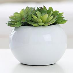 5.25 inch Round Modern Potted Green Artificial Succulent Pla