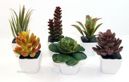 6 Mini Succulent Artificial Flowers Plants Pot Set Home Offi
