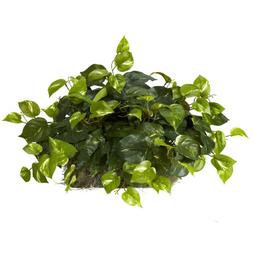 Nearly Natural 6708 Pothos Ledge Set on Foam Decorative Silk