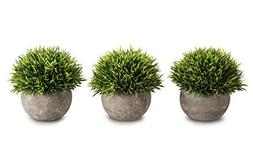 OPPS Mini Artificial Plants Plastic Fake Green Grass Topiary