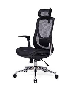 VIVA OFFICE High Back Executive Mesh Chair with Adjustable H