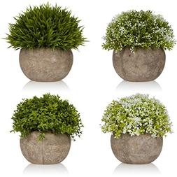 West Dwelling Mini Potted Plants - Small Fake Artificial Suc