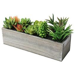 MyGift Artificial Mixed Succulent Plants in Rectangular Brow
