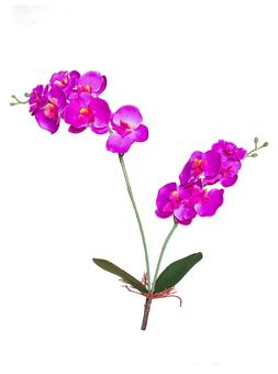 Artificial Orchid Small Fake Flower Fuchsia White for Home O