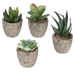 MyGift Assorted Decorative Artificial Succulent Plants with