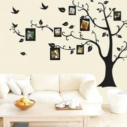Photo Frame Vinyl Wall Stickers Tree Birds Art Decals Home K