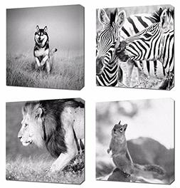 4Pcs 12x12 Canvas Wood Stretched Animal Zebra Husky Squirrel