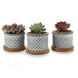 T4U 2.25 Inch Cement Succulent Planter Pot with Bamboo Tray