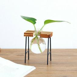 Creative Hydroponic Plant Vase Wooden Frame Office Coffee Sh