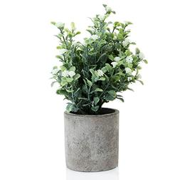 Decorative Small Artificial Potted Grass Pea White Flower Pl