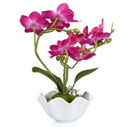Decorative Artificial Silk Phalaenopsis Orchid Flower with W