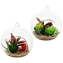 Decorative Artificial Succulent Plants in Hanging Clear Glas