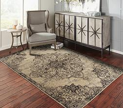 A.S Quality Rugs Distressed Area Rugs 2x3 Door Mat Indoor Sm