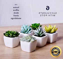 echt Home Artificial Succulent Fake Plants For Decoration Li