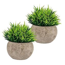 The Bloom Times Fake Plant for Bathroom/Home Decor, Small Ar