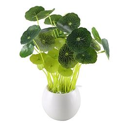 GTIDEA Fake Potted Plants Artificial Chinese Money Plant Bon