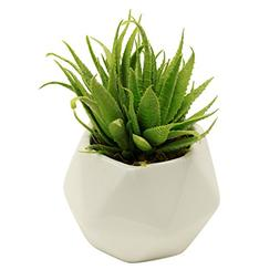 Small Faux Aloe Succulent in White Geometric Ceramic Planter