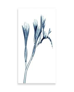 Ambesonne Flower Wall Art, Uv Style Picture Flower Floral Ra