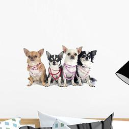Wallmonkeys Four Fashionable Chihuahuas Wall Decal Peel and