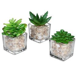Small Glass Cube Artificial Plant Modern Home Decor / Faux S