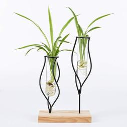 Glass Tube Vase Metal Stand Indoor Plants Planter for Home O