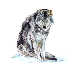 Grey Timber Western Wolf Native American Home Office Room De