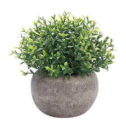 HC STAR Artificial Plant Potted Mini Fake Plant Decorative L