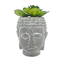 Head Planter Include High Approx Office Decoration hosting r