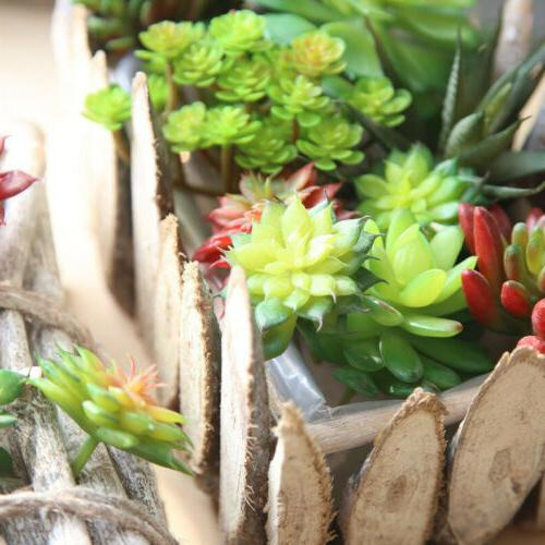 1pc Flower Office Succulents Beautiful Decor