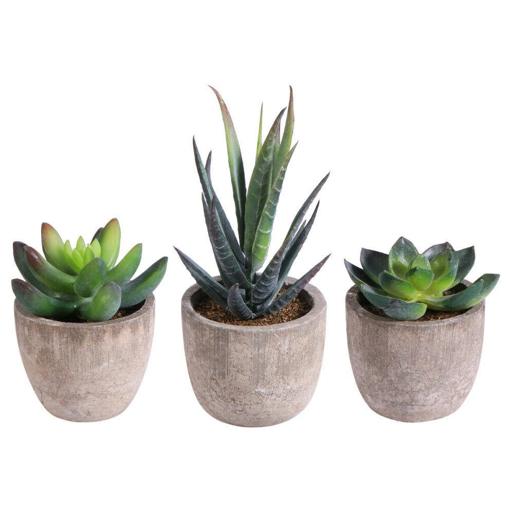 3 Artificial Succulent Plants Fake in Pots Mini Faux Grass f