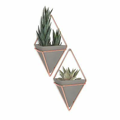 Umbra Trigg Hanging Planter Vase & Geometric Wall Decor Cont