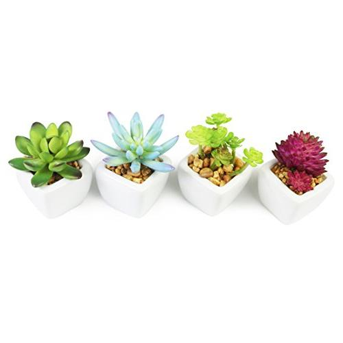 Myartte Home Shrubs-Set 4 Artificial Succulent Home