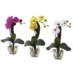 Nearly Natural Home Indoor Decorative Tabletop Fancy Mini Ph