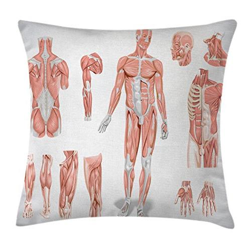 human anatomy throw pillow cushion