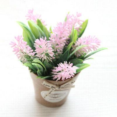 Office Party Gift Wedding Plant In Pot