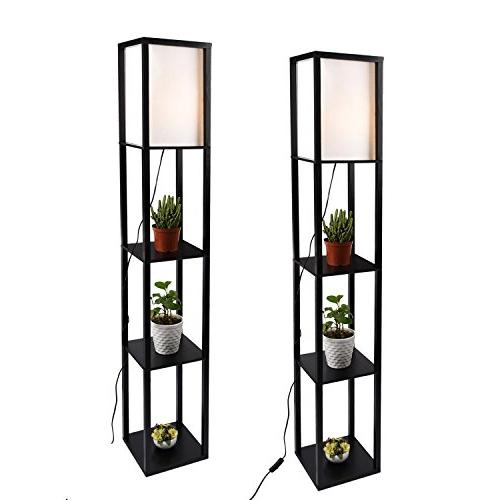 shelf floor lamp standing
