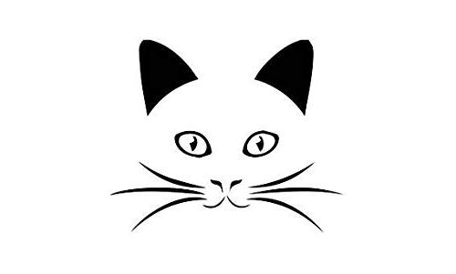 unique whiskers cat face decal