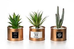 Opps Mini Artificial Plants Plastic Green Grass Cactus with