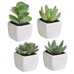 Set of 4 Mini Assorted Green Artificial Succulent Plants in