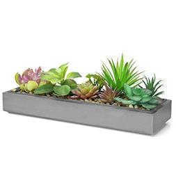 Mixed Color Artificial Succulent Plant Arrangement in Modern