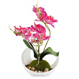 Modern Artificial Flower Decoration, Synthetic Orchids w/ Sl