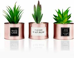 Office Decor Rose Gold Faux Artificial Plant Cactus Succulen