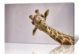 Purple Verbena Art One Panel Giraffe Watching Picture Prints
