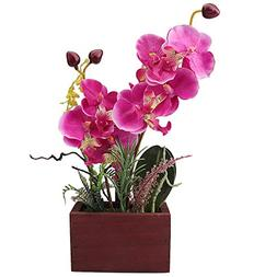 RERXN Phalaenopsis Bonsai Artificial Orchid Arrangement with