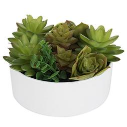 MyGift 6 inch Realistic Artificial Faux Mixed Succulent Plan