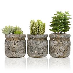 Set of 3 Realistic Artificial Green Succulent Plants in Rust