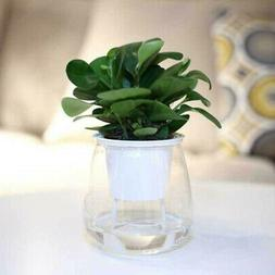 Self-watering Plant Flower Pot Wall Hanging Planter For Home
