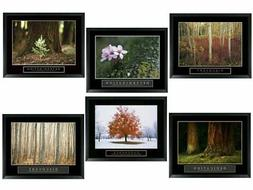 Set of 6 Framed Motivational Posters Complete Office Decor T